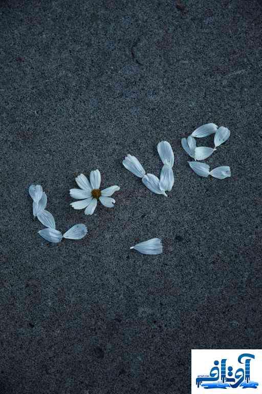 عکس عشقی برای پروفایل,عکس عشقی بدون متن,عکس عشقی کارتونی, www.avtaf.com