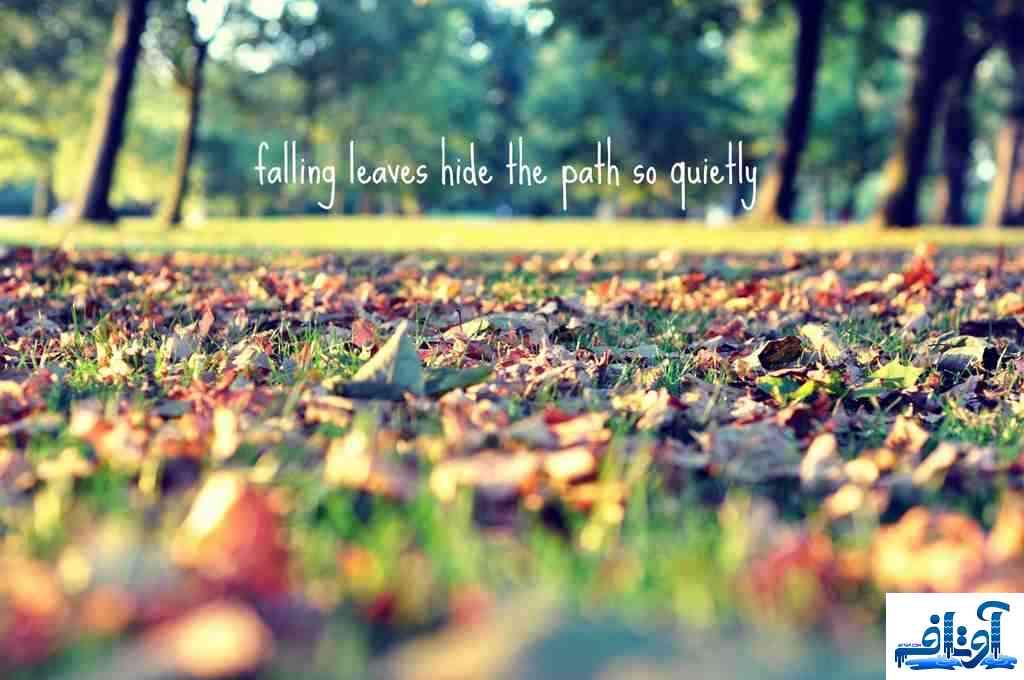 عکس پروفایل عاشقانه خنده دار,عکس پروفایل عاشقانه دختر و پسر,عکس پروفایل عاشقانه عروسکی, www.avtaf.com